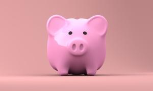 piggy-bank-2889042_1921 (1)